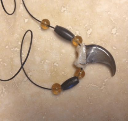 Real Bear claw necklace