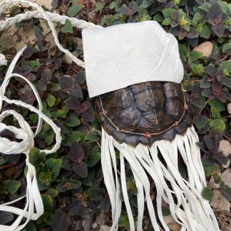 Snapping turtle shell bag