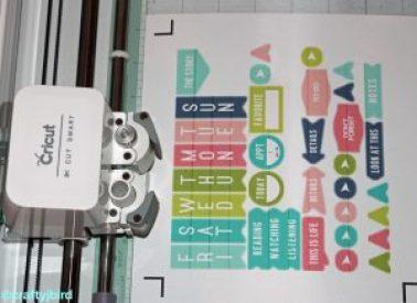 Cricut Summer Planner Stickers - More info @ craftyjbird.com