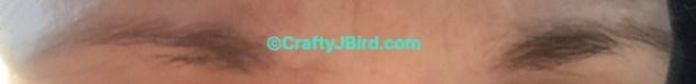 Eyebrow Growth Serum -- Visit CraftyJBird.com for more info...