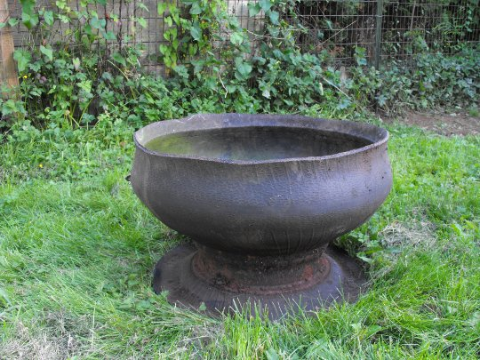 How to make inside out tire planters crafty little gnome for Using tyres as planters
