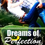 DREAMS OF PERFECTION by Rebecca Heflin #bookcoverreveal