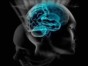 human-mind1