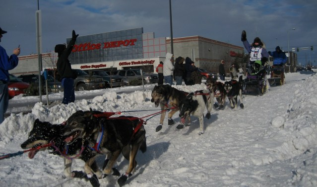 2008_Iditarod_Anchorage_(2311631691)