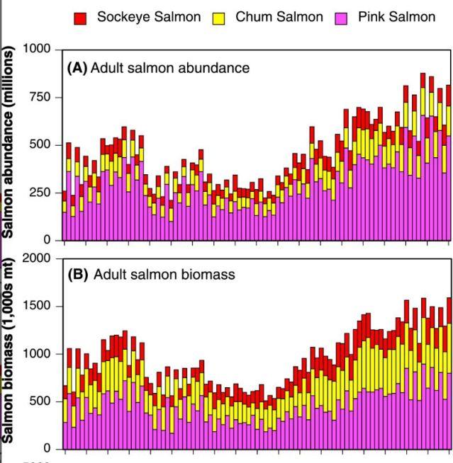 salmon abundance.JPG