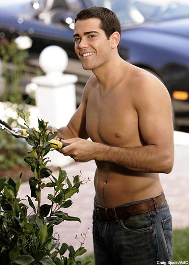 Jesse Metcalfe played John, Gabby's (Eva Longoria-Parker) gardener and lover.