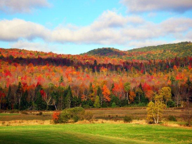 Fall colors in the morning mist at Franconia, N.H. Craig Davis/Craigslegz.com