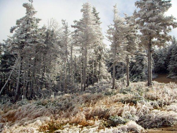 It looks like winter in October on a crisp morning atop Canon Mountain. Craig Davis/Craigslegz.com