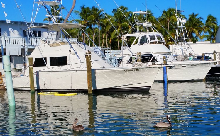 bud-n-marys-fishing-boats