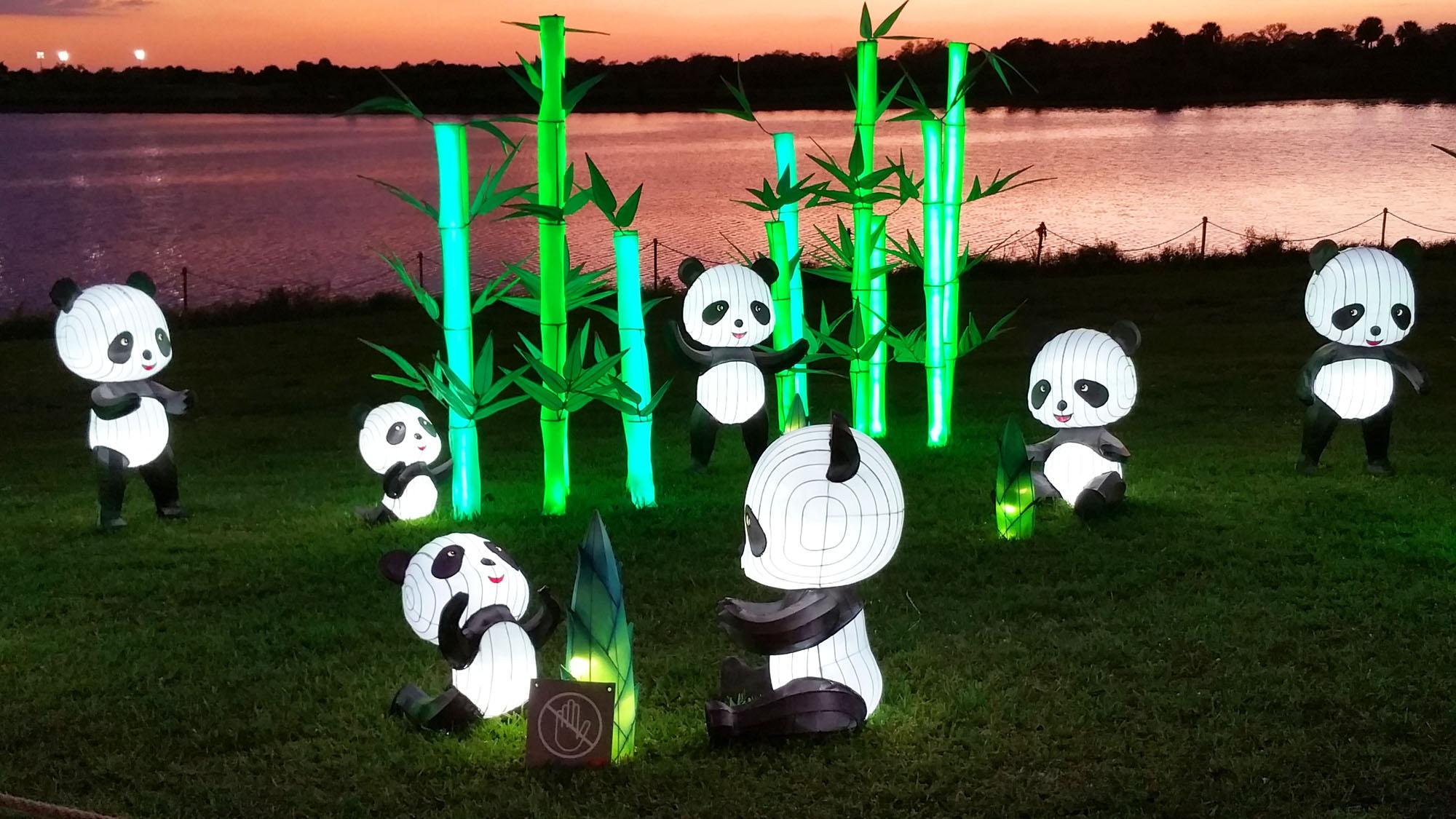 pandas-lantern-festival