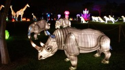 Lights bring animals to life at the Chinese Lantern Festival in Boca Raton. (Craig Davis/Cragislegz.com