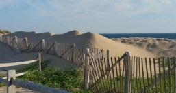 Race Point Beach near Provincetown is part of the Cape Cod National Seashore. (Craig Davis/Craigslegz.com)