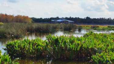 Green Cay Wetlands has a spacious nature center. (Craig Davis/CraigslegzTravels)