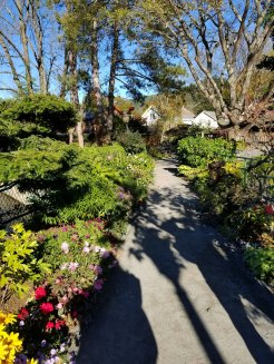 On the walkway of the Bridge of Flowers at Shelburne Falls, Mass. (Fran Davis/CraigslegzTravels.com)