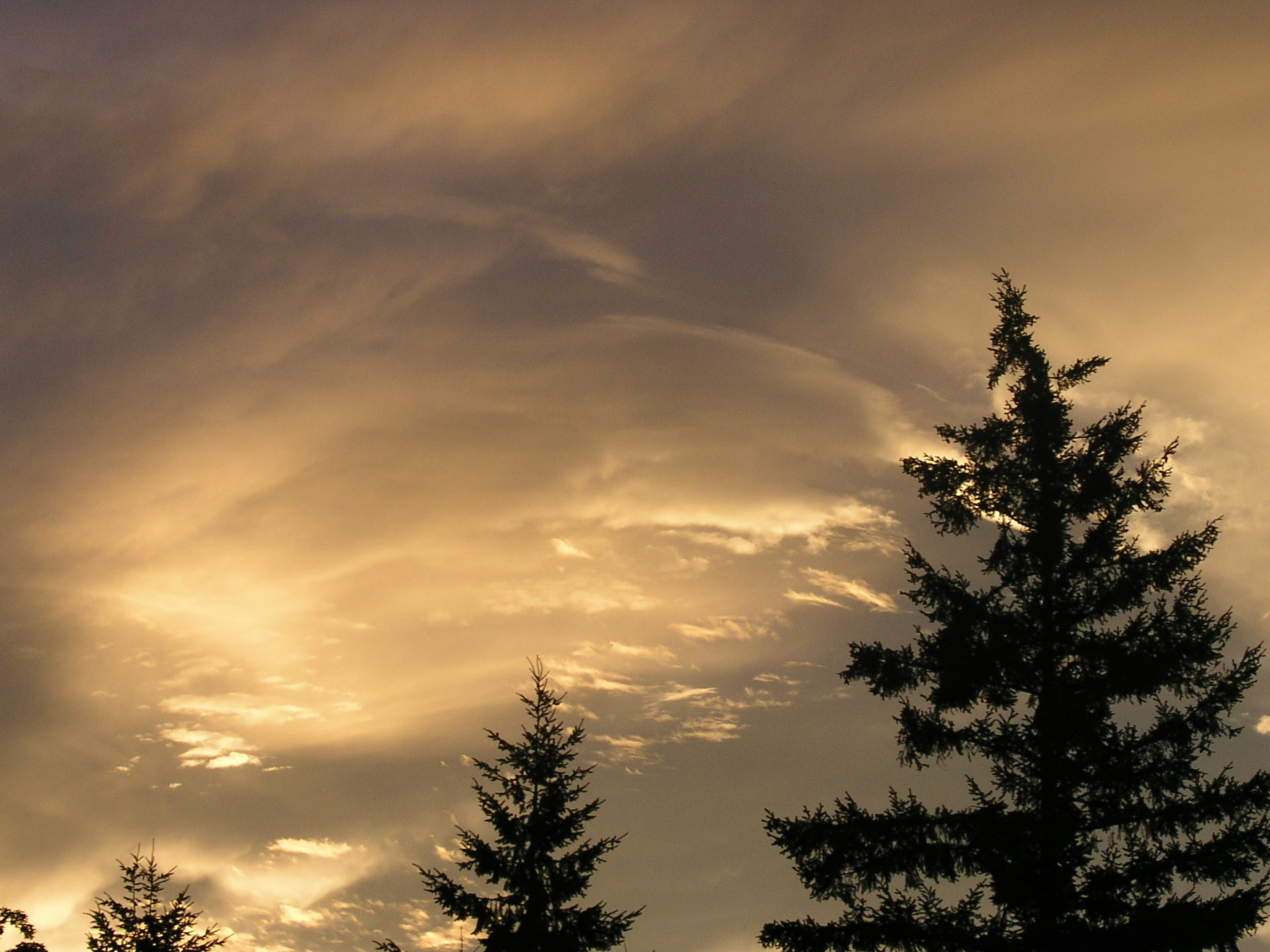 Sky-High Credit is Required for Best Interest Rates.  Photo from Springfield Oregon.