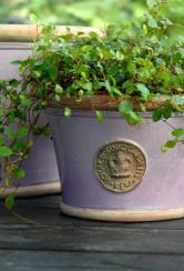 Kew Garden kruka Low Planter Powder Pink