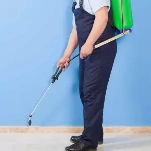 treating commercial-property-for-pest-control