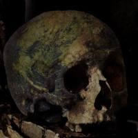 Sobre los cráneos