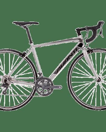 2018 Avanti Giro 1