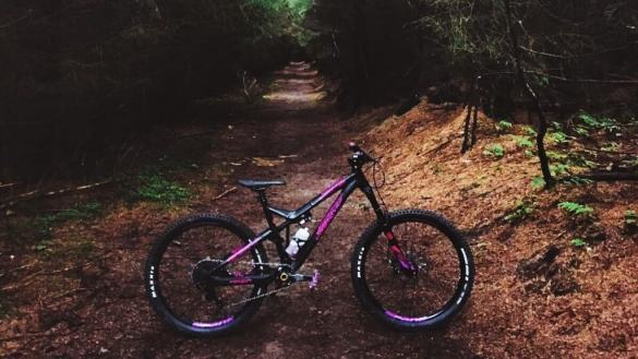 mountain biking trails guide Dalby forest