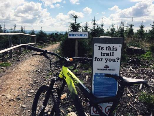 bike park wales ride guide review mountainbiking