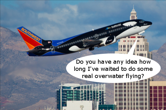 southwest takes the first step toward international flying with