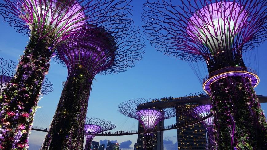 Singapour - Tour du monde en famille - Itinéraire