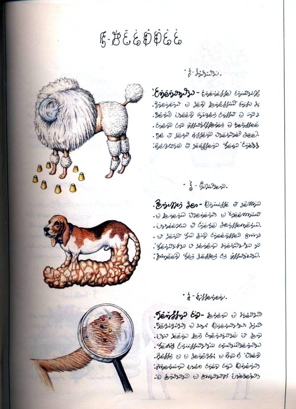 Codex Seraphinianus Semi Licit Copy Of A Semi Legendary