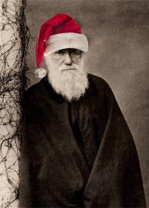 Darwin Christmas Card
