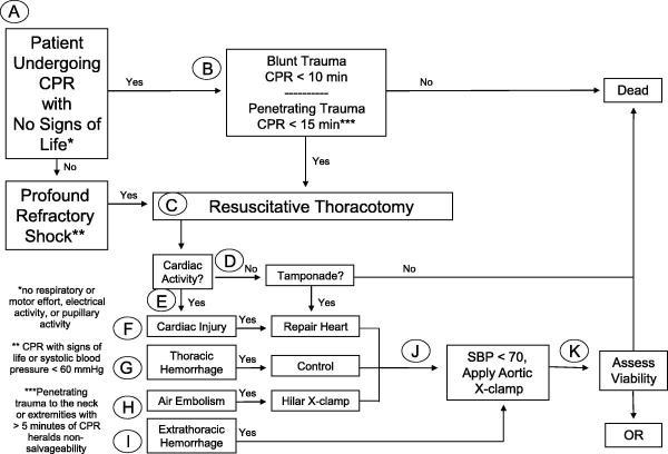 WTA Throacotomy