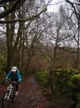 Ascent from Hawkshead