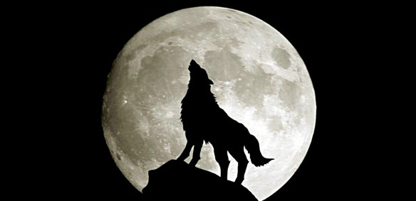 Lonely Girl Pictures Wallpaper Astronomy Behold The Wolf Moon Crash Course