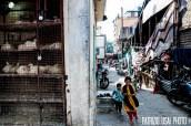Pune - Maharashtra - India