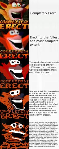 https://www.reddit.com/r/crashbandicoot/comments/5thg8r/mr_crash_erecticoot/