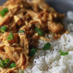 Easy, sweet and tangy Crock Pot honey mustard chicken_2