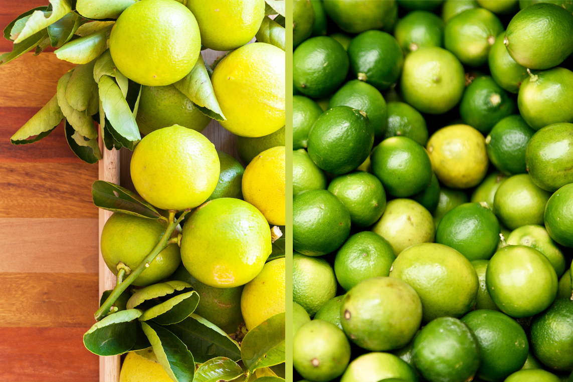 What is the difference between lime and lemon