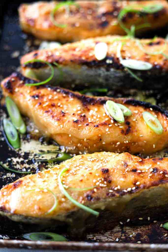 Close up photo of miso-honey salmon filets