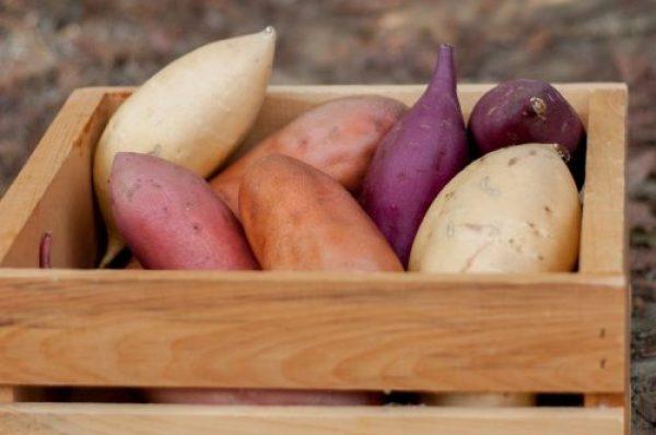 California Sweetpotatoes|CravingSomethingHealthy