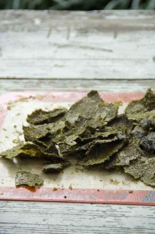 Kale Tortilla Chips|Gratitude and Greens