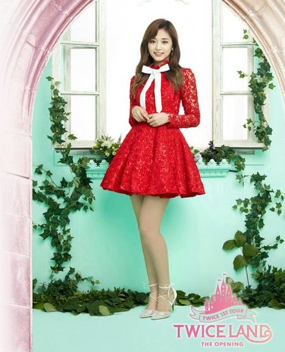 Tzuyu Facts and Profile, Tzuyu's Ideal Type 2