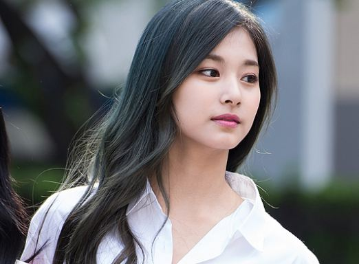 Tzuyu Facts and Profile, Tzuyu's Ideal Type 5