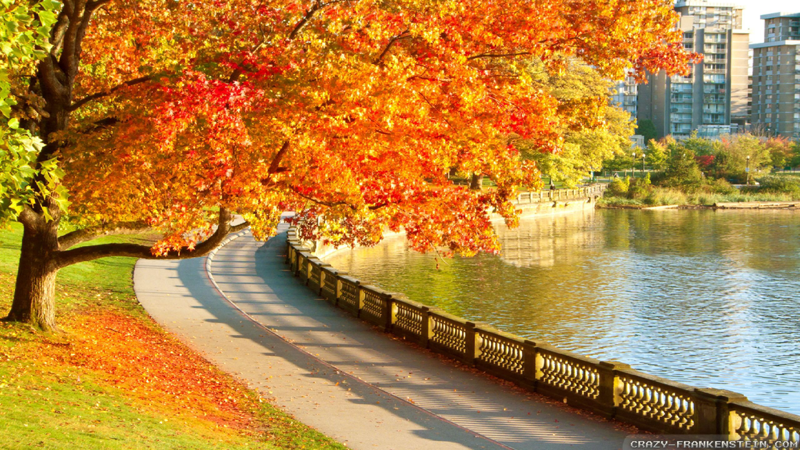 Free Fall Bc Nature Wallpaper Autumn In Canada Wallpapers 2 Seasonal Crazy Frankenstein