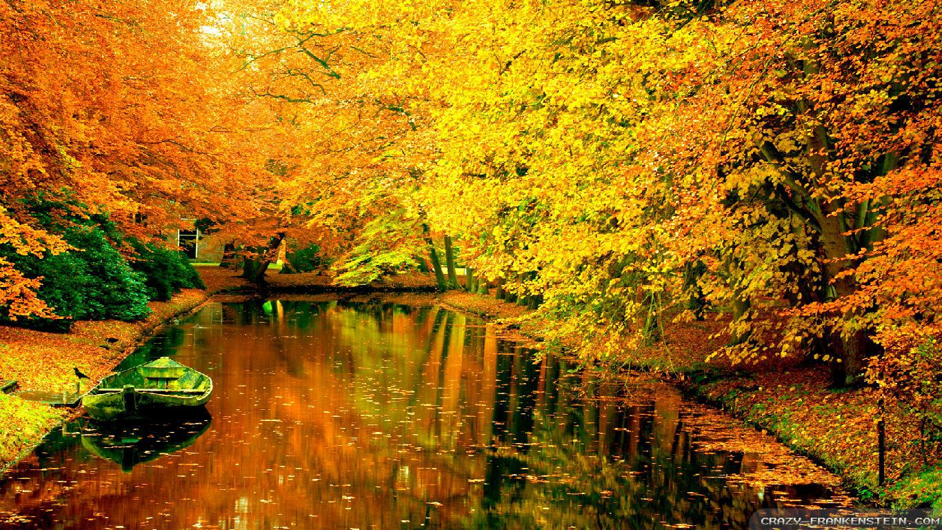 Free Fall Colors Wallpaper Autumn In France Wallpapers Seasonal Crazy Frankenstein