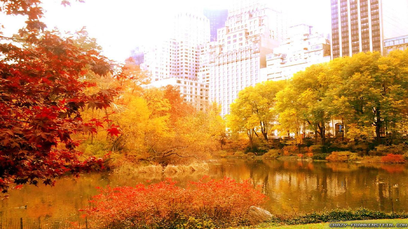 Desktop Wallpaper Fall Scenes Autumn In New York Wallpapers Seasonal Crazy Frankenstein