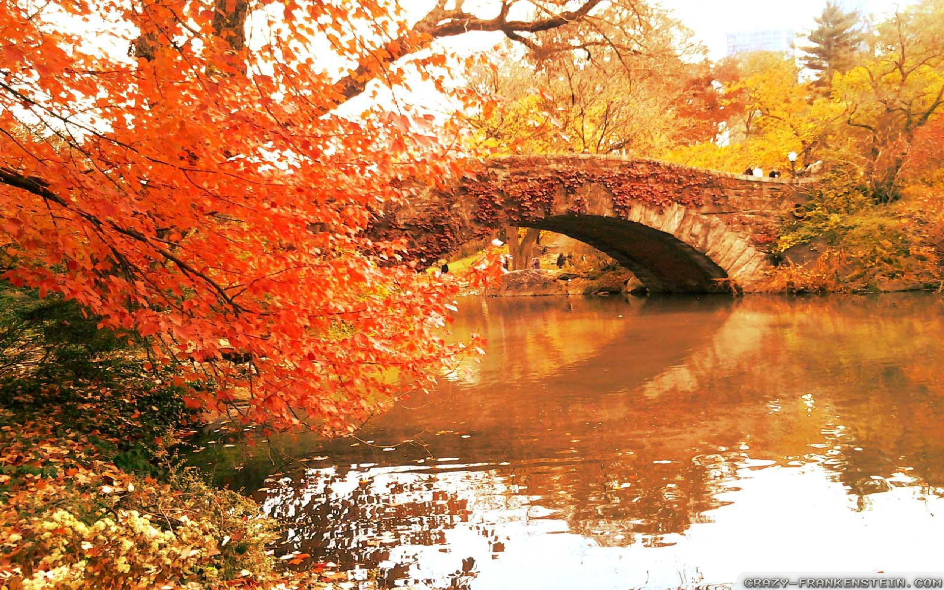 Fall In Central Park Wallpaper Autumn In New York Wallpapers 2 Seasonal Crazy