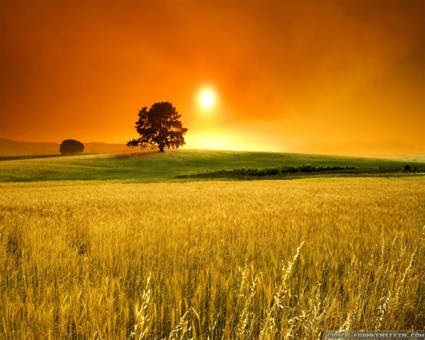 25 Free Desktop Wallpaper Summer Landscapes Pictures And Ideas On
