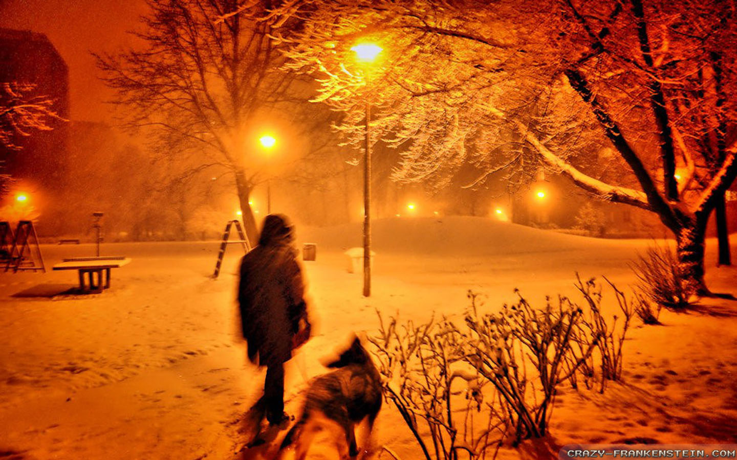 Snow Falling At Night Wallpaper Winter Night Wallpapers Crazy Frankenstein