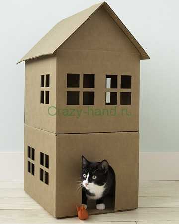 domil-cat1