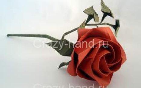 rosek
