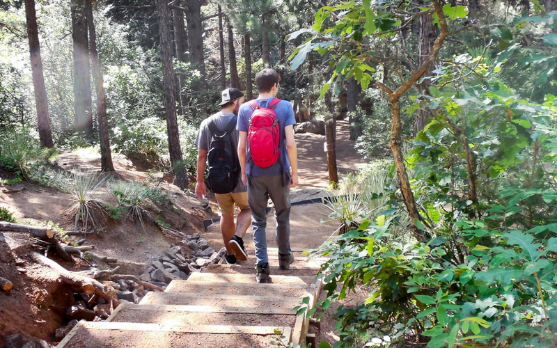 Mild to Wild Hikers Love This Easy Day Hike